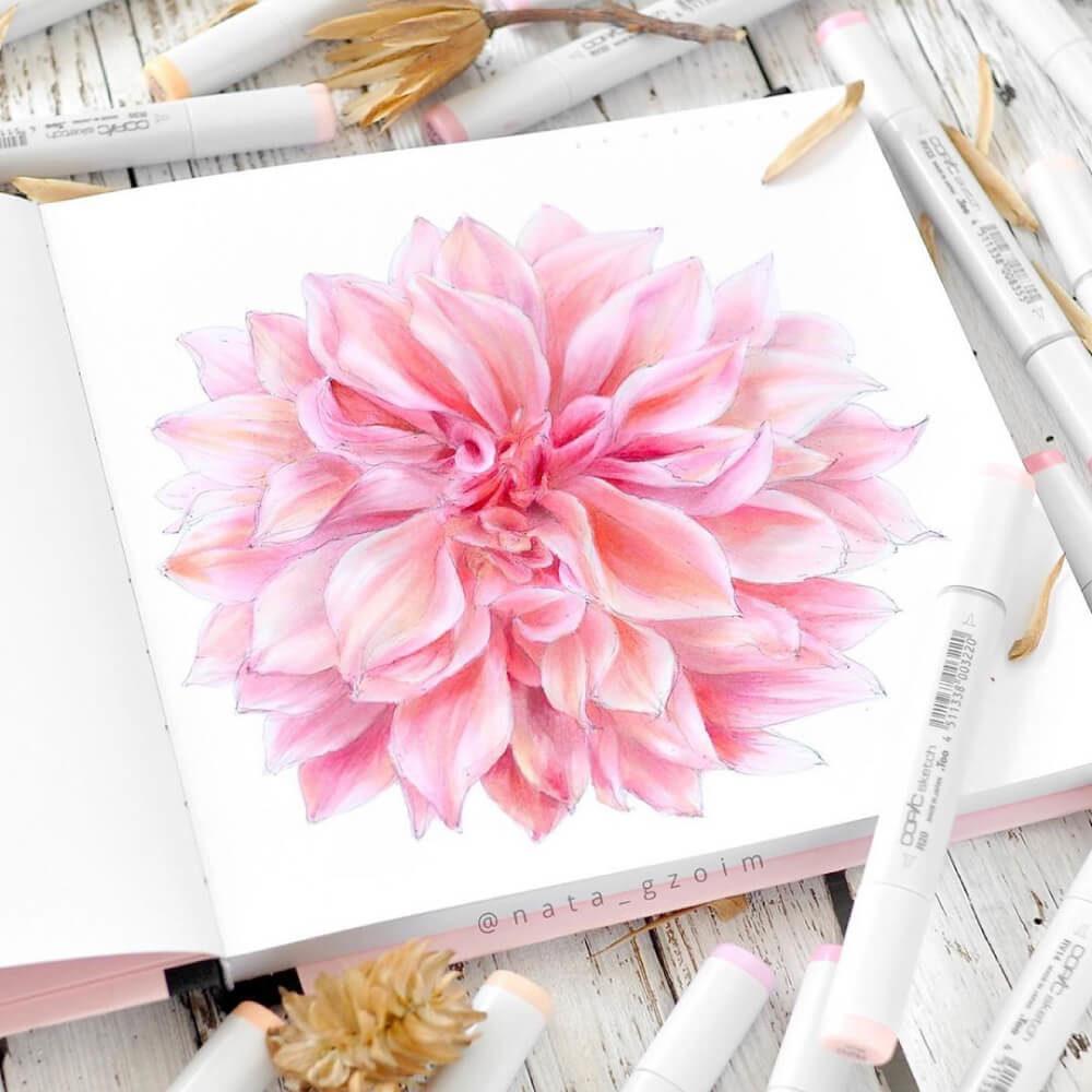Marcadores COPIC Ilustración Chrysanthemum