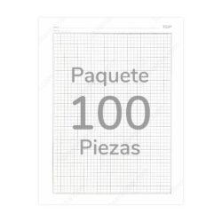 Paquete 100 Cuadernillos Papel Ministro Cuadrícula 5 mm Tamaño Carta TOP