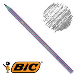 Lápiz de Grafito BIC Evolution Pijama (Modelo Aleatorio)